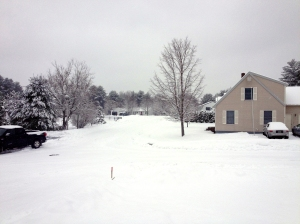 1/16/13 - the view from my step.