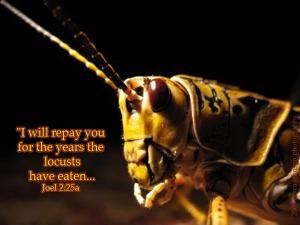 locusts-1
